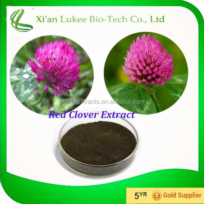 100% pure Isoflavones extract / natural red clover extract Isoflavones / Colon Cancer red clover extract