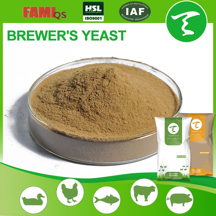 Factory Supply High Quality 40%,45% Brewer dried yeast