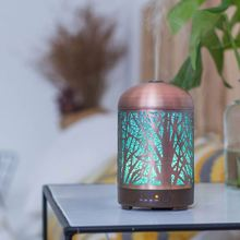 LM-X033 100ML 7 Color Shenzhen Light Night Elves Portable Usb Atomizer Humidifier Essential Oil Diffuser