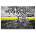 1 Panel HD Printed Golden Rape Flower Canvas Prints Black and White Tree Countryside Scenery Cheap Dropship Wall Picture