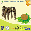 alibaba china supplier Angelica extract/Dong Quai extract medicine for blood circulation & calm the nerves function