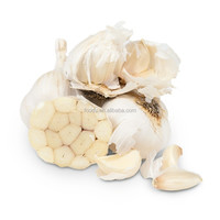 Offering Reasonable Price Natural Fresh Garlic and Better Quality