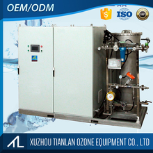 100g Disinfection ozone water machine ozone generator for swimming pool