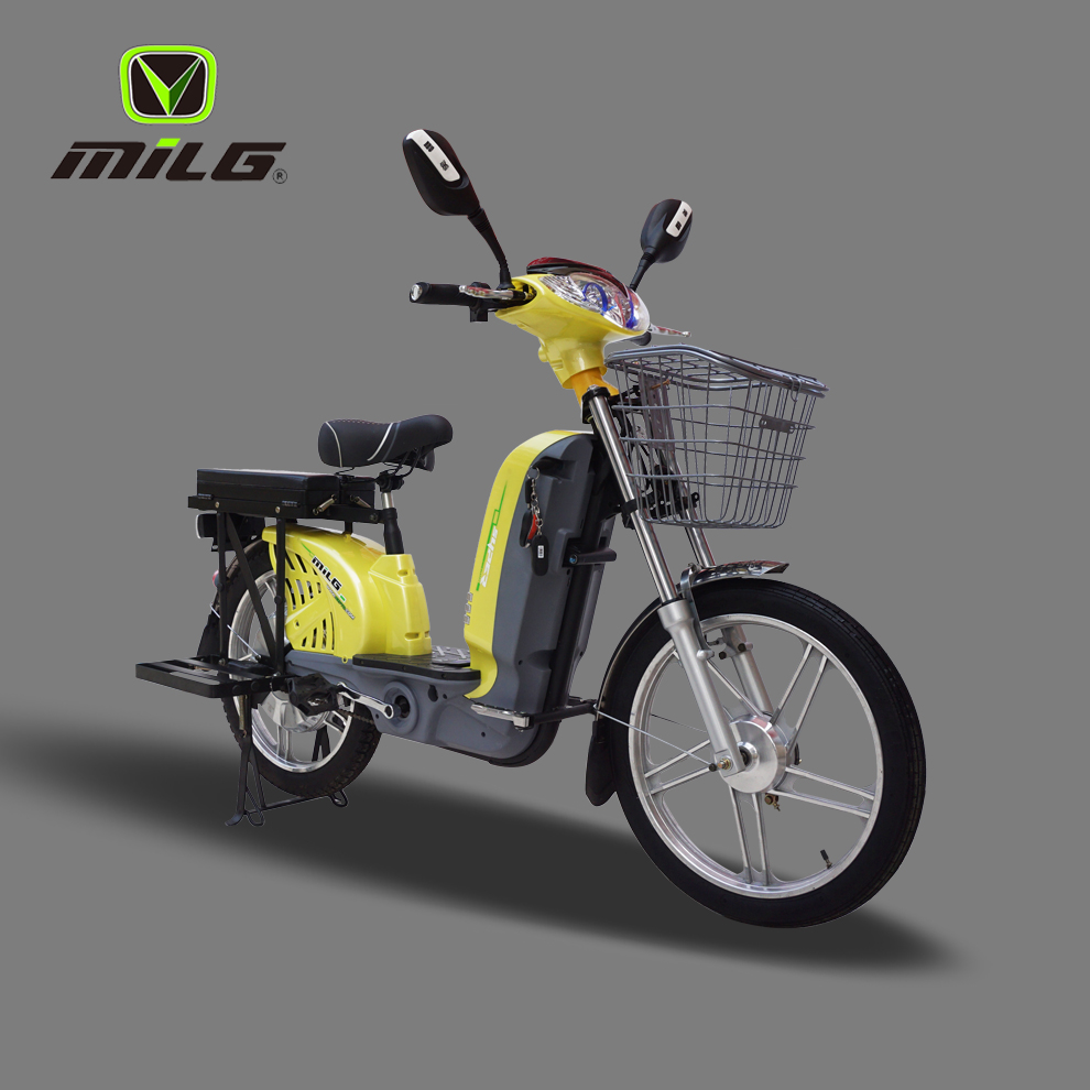 Hot Sale 450W CE Electric Motorbike