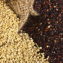 Quinoa All Types Organic & Conventional Red- Black and White Quinoa 2017