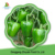 Frozen new crop IQF green pepper whole 2016 new price
