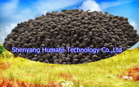 Humic Acid Soil Conditioner Granule