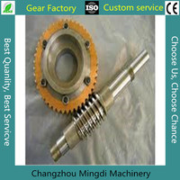 motorcycle gear,worm gear assembly,small reduction gears