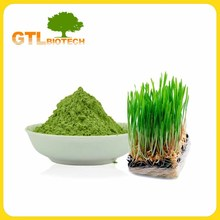 Hot Sale Organic Wheat Grass Juice Powder in Stock