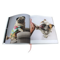 Lock line binding cute dog realistic photo collection book