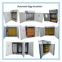 Incubator egg hatching machine/chicks chicken breeds