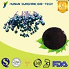 2015 New Certified Organic Elderberry Extract / 25% Anthocyanidin Elderberry Extract Powder
