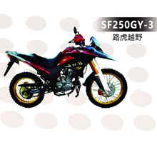 New design 250cc engine dirt bike motorcycle SF250GY-3
