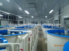 Fish farm nursery system