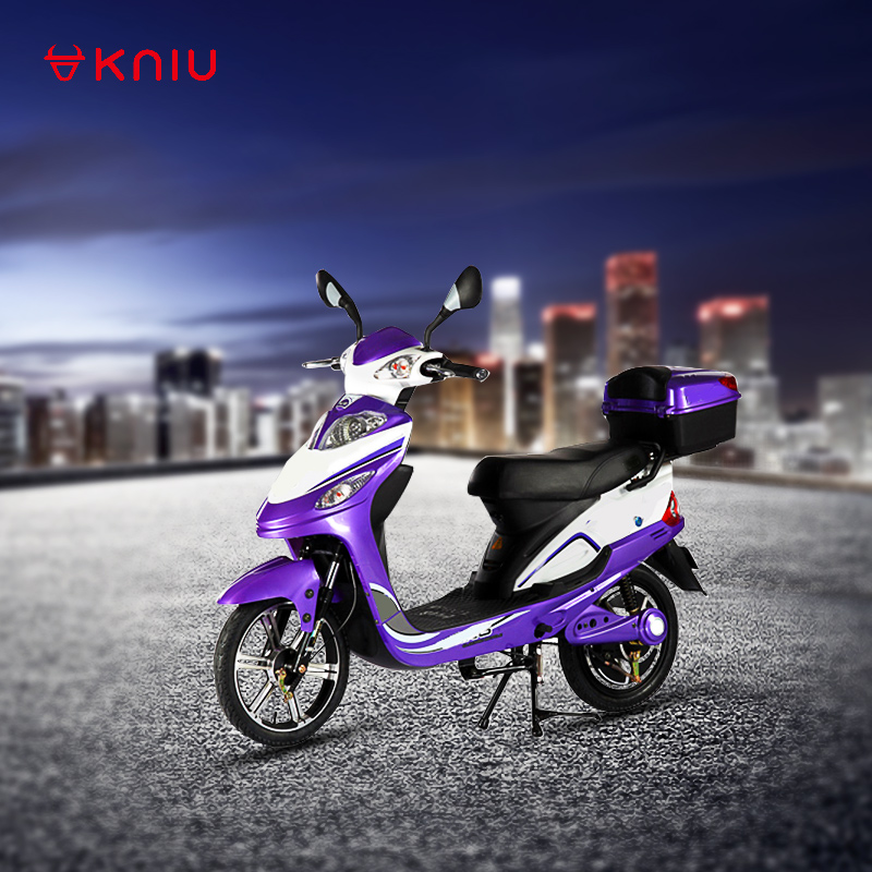 electric pit bike/ electric bicycle hunt/ cargo electric bike