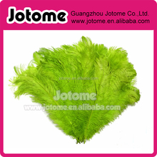 Ostrich Plumes, 18- 24 inch LIME GREEN Large Wing Plumes Feathers