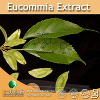 3W supply Eucommia Extract (100% Natural and Healthy Product)