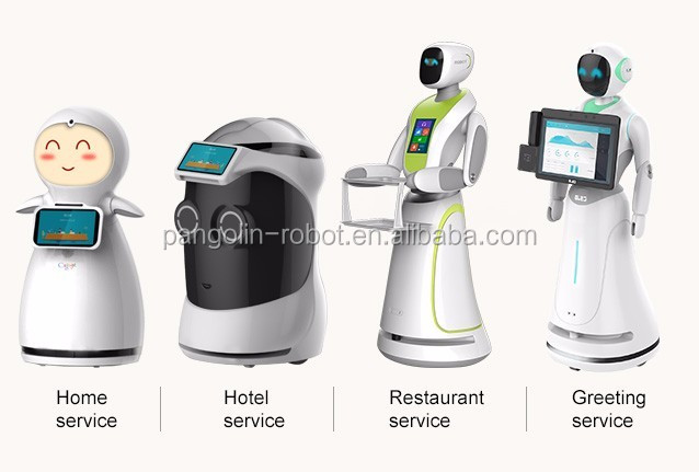 Multi-function service robot with greeting /say welcome