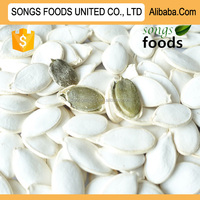 High Quality organic Pumpkin Seeds in china