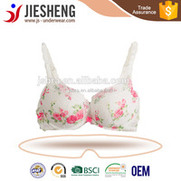 image lace bra ,hot images women sexy bra underwear,graceful underwear (Accept OEM)