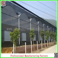 Hot sale 9.6m multi-span agricultural plastic houses with high quality