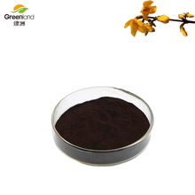 Greenland High quality 100% Nature fructus forsythiae extract