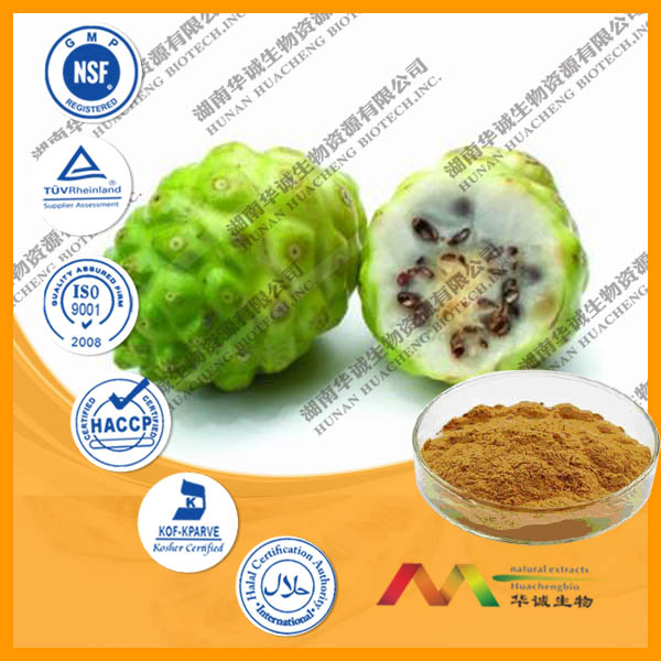 High Quality Morinda Citrifolia Extract/noni extract