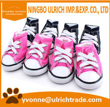 PSS02 2016 fashion converse dog shoes wholesale