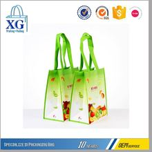 Newest sale Professional made reusable tote bottle wine non-woven bag