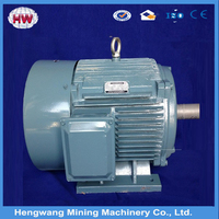 Variable speed electric motors, electric dc motor