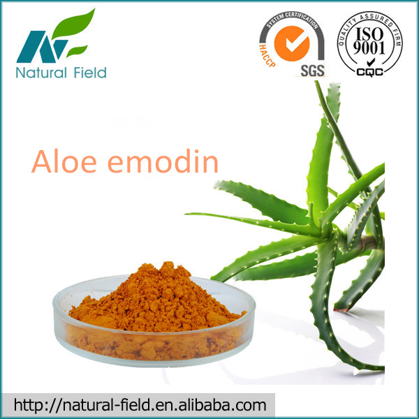 100% Pure Natural Aloe-emodin Aloe leaves plant extract 95%, 98% Manufacturer