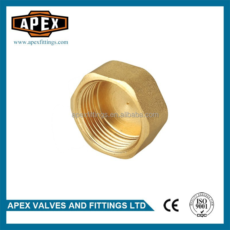 APEX Brass Hexagon Plumbing Fittings Female Threaded End Cap