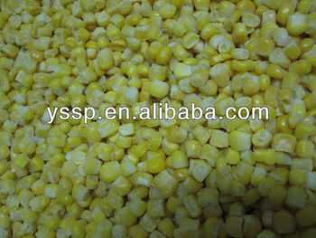 New season frozen sweet corn Cuiwang