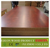 1220x2500mm glossy / matt finish plywood for kitchen/ office chairs