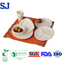 Biodegradable Disposable Sugarcane Paper Plate(box,plate,dish,tray,cup,cutlery)