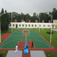 50mm Chinese synthetic grass/basketball court flooring/artificial grass