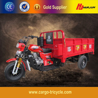 Latest Style 3 Wheel Motorcycle Trike/250cc Three Wheeled Motorcycle for Sale