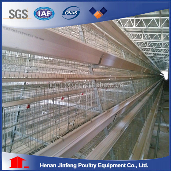 High standard Automatic Chicken Cage for sale /poultry layer farm