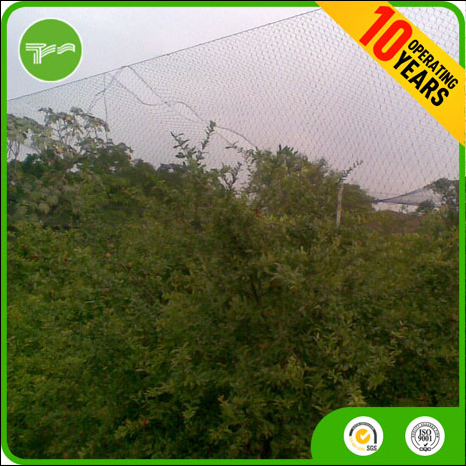 Anti bird netting,best price stainless steel bird netting