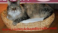 Water hyacinth cat bed