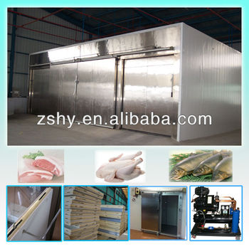 Freezer room to storage frozen meat and fish