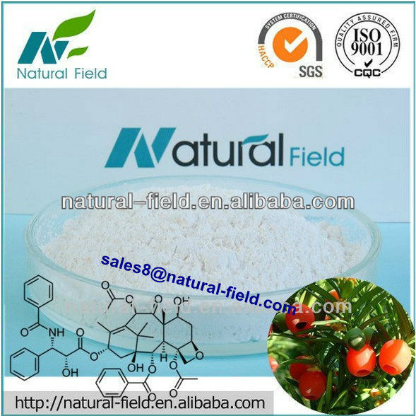 ISO factory supply natural Taxol 99% (Chinese Yew Extract) ,CAS NO : 33069-62-4