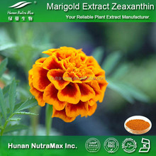 Marigold Flower Plant Lutein Extract for Eyes Health