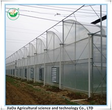 Top ventilation frame sawtooth greenhouse used in agriculture