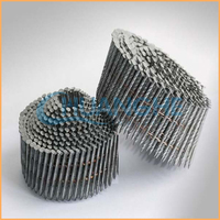 HOT! sale High quality cheap hot dipped galvanized roofing coil nails made in China suppliers (manufacturer)