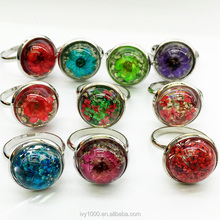 Creative Resin Finger Ring With Dry Flower Inside Jewelry Accessories Rings Wholesale