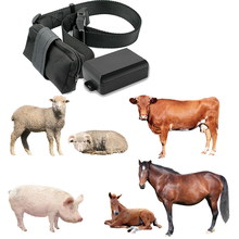 Sheep Animal cow cattle gps collar horse gps tracking device gps tracker for animals livestock