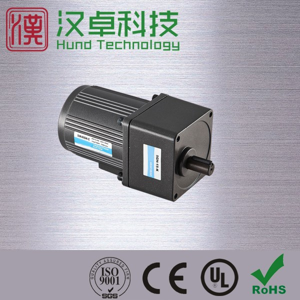 110v high torque low rpm electric motor