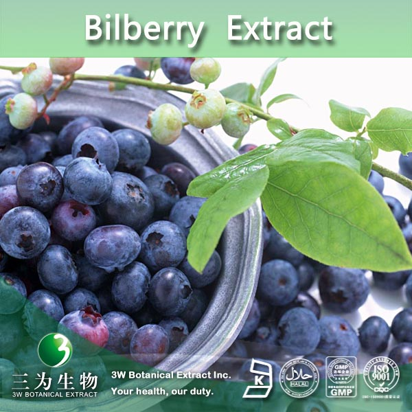 Free sample Bilberry extract,Whortleberry extract Proanthocyanidins 25%