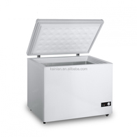 Solar Fridge 12V Fridge 160L Freezer